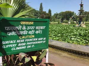 A poorly translated sign in Udaipur