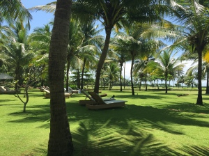 The gardens at Taj Exotica, Goa